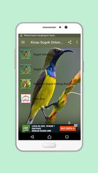 Kicau Sogok Ontong Mp3 screenshot 3