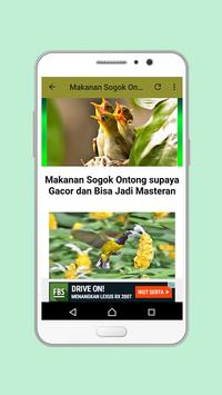 Kicau Sogok Ontong Mp3 screenshot 1