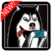 Puppy puzzle game:Husky War icon