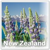 Visit New Zealand icon