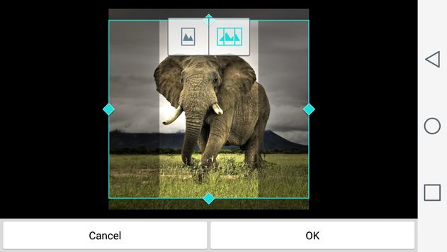 Animals Wallpapers apk screenshot