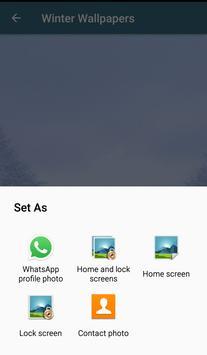Winter Wallpapers screenshot 3