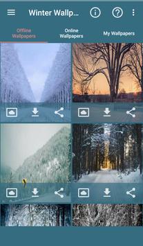 Winter Wallpapers screenshot 1