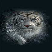 White Tiger Water LWP icon