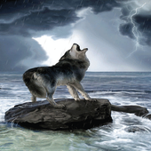 Wolf Barking Live Wallpaper icon