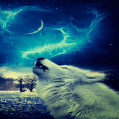 Wolf In Night LWP icon