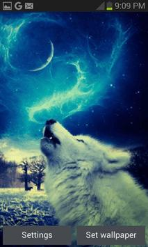 Wolf In Night LWP poster
