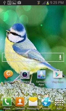 Yellow Blue Bird LWP apk screenshot