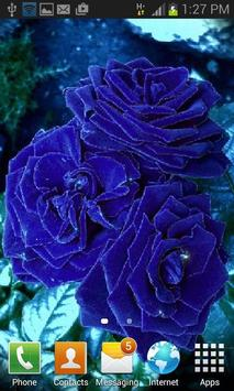 Blue Roses Live Wallpaper apk screenshot