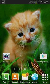 Cute Cat Butterfly LWP screenshot 2