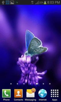 Cute Butterfly Live Wallpaper apk screenshot
