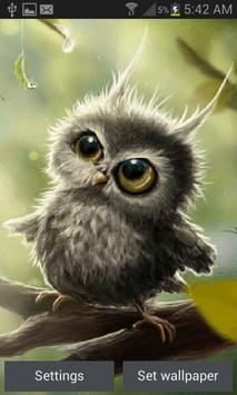 Cute Owl Baby LWP poster