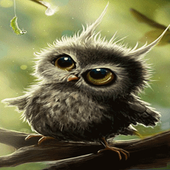 Cute Small Owl LWP icon