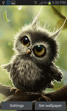 Cute Small Owl LWP poster