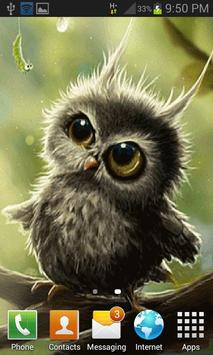 Cute Small Owl LWP apk screenshot
