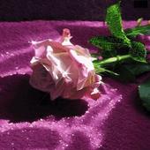 Green Leaf Rose LWP icon