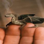 Little Dragon Live Wallpaper icon