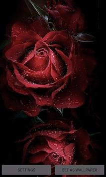 Magical Roses Live Wallpaper poster