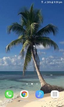 Ocean Tree Live Wallpaper poster