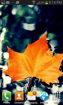 Orange Leaf Live Wallpaper poster