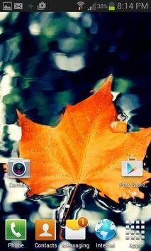 Orange Leaf Live Wallpaper apk screenshot
