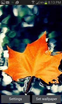Orange Leaf Live Wallpaper screenshot 2