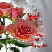 Pink Rose Butterfly LWP icon