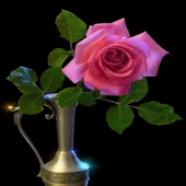 Pink Rose Pot Live Wallpaper icon