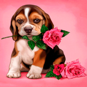 Puppy Rose Live Wallpaper icon
