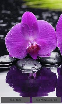 Purple Orchid Live Wallpaper poster