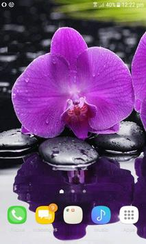 Purple Orchid Live Wallpaper apk screenshot