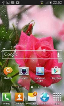 Rainy Pink Rose LWP apk screenshot