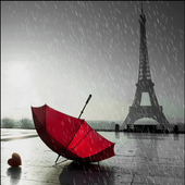 Rainy Red Umbrella LWP icon