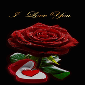 Red Heart Rose LWP icon