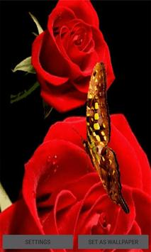 Red Roses Butterfly LWP poster