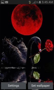 Red Rose Swan LWP poster
