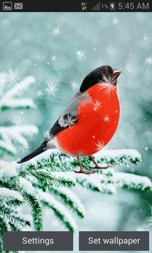 Snowy Red Bird LWP poster