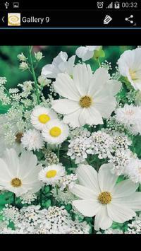 Daisy Flower screenshot 6