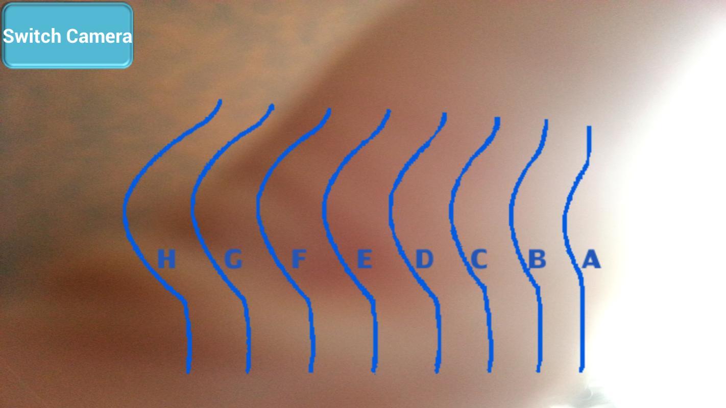 C Cup Breast Vs D Cup Breast Bra Cup Size APK Baixa...
