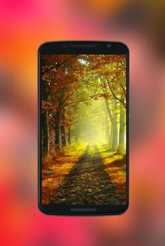 Autumn Wallpapers HD 2017 apk screenshot