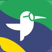 Hoje Notícias: Vídeos e Notícias do Brasil & Mundo icon