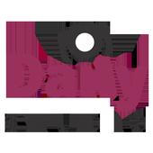 Daily Studios icon