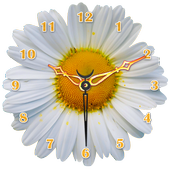Daisy Flower Clock icon