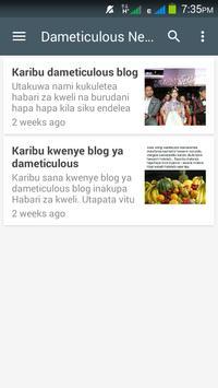 Dameticulous App poster