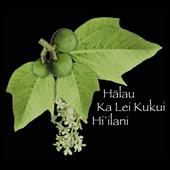 Halau Ka Lei Kukui Hi'ilani - Mainland USA icon