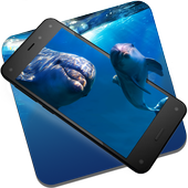 Dolphins Underwater Live WP icon