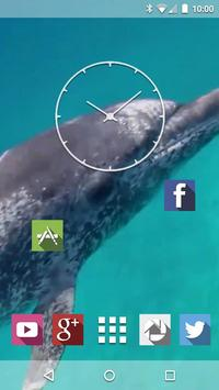 Dolphins Underwater Live WP screenshot 1