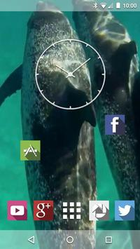 Dolphins Underwater Live WP screenshot 2