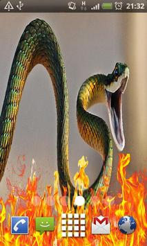 Dangerous snake Live Wallpaper apk screenshot