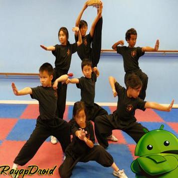 Basic Strategy of Best Kung Fu Practice apk screenshot